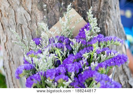 Small bouquet of dried flowers (statice limonium)