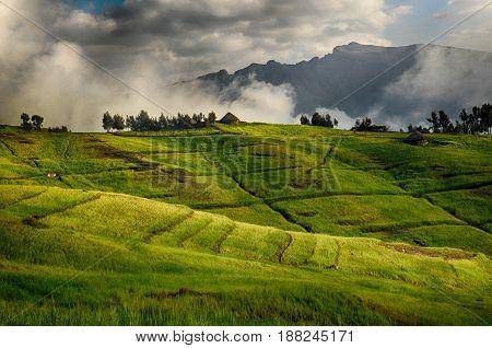 View of landscape below Simien mountains park Ethiopia.