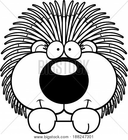 Cartoon Porcupine Peeking