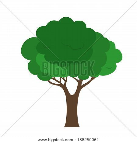 Vector illustration of a green tree with a brown trunk isolated on a white background