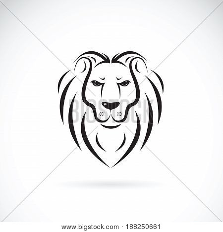 Vector of a lion head design on white background Wild Animals.