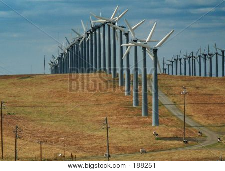 Windmills And