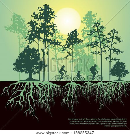 Split illustration with trees and roots. Family riding bicycles together