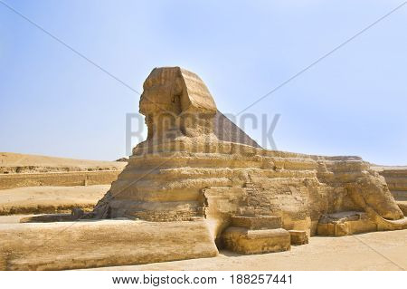 Guardian Sphinx guarding the tombs of the pharaohs in Giza. Cairo Egypt.