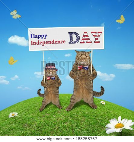 Two cats is holding a banner with the text