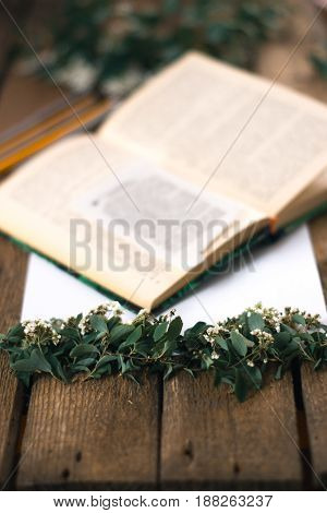 Branches with white flowers on the background of the book