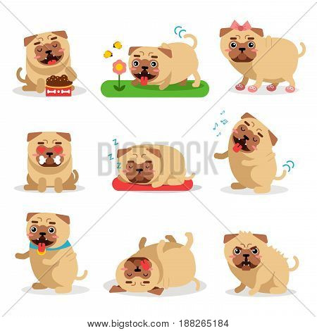 Cute pug dog activities during day set. Dog daily routine vector illustrations isolated on a white background