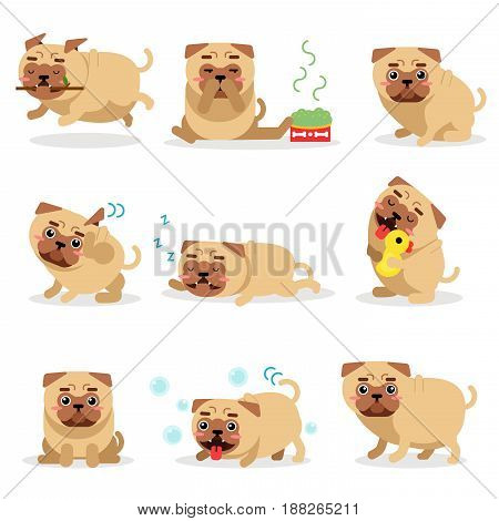 Cute funny pug dog activities during day set. Pug daily routine vector illustrations isolated on a white background