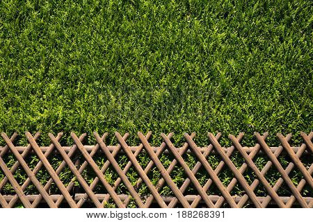 view of a wooden rustic fence with green shrubs as second fence behind, seen in cologne, germany