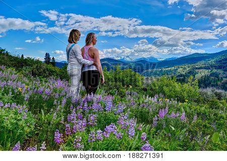 Girl friends hiking in meadows full bloom. Banff National Park. Canadian Rockies. Calgary. Alberta. Canada.
