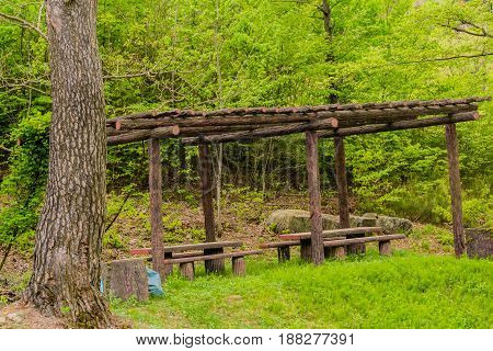 Picnic tables in secluded woodland park with lush green foliage in the background.
