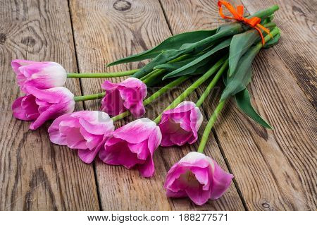 Bouquet of pink tulips on an old wooden table. Studio Photo