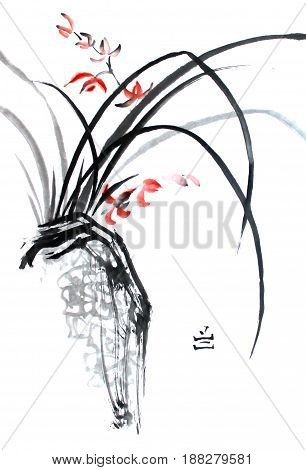 Chinese traditional ink painting of orchid on white.