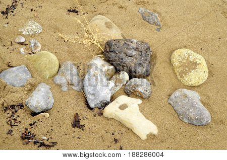 On light brown sand lie stones of different shapes