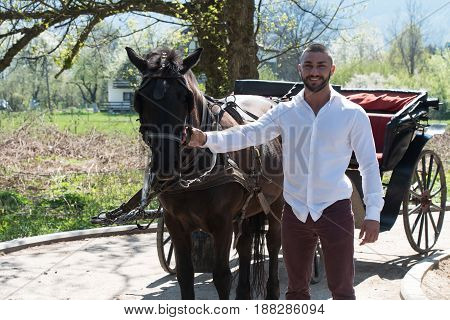 Young Man With Horse Standing In Park