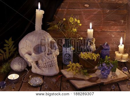 Mystic still life with skull, open book and flowers. Alternative medicine vintage concept, witch table for halloween