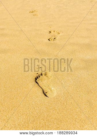 details of a series of footsteps left on the sand