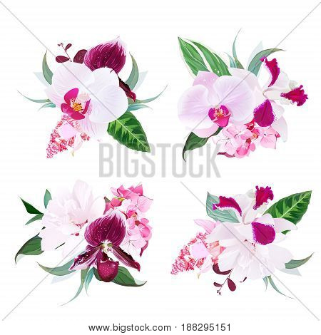 Exotic tropical floral bouquets arranged from white layered hibiscus, medinilla, paphiopedilum orchid, hydrangea, Singapore flowers vector design set. All elements are isolated and editable.