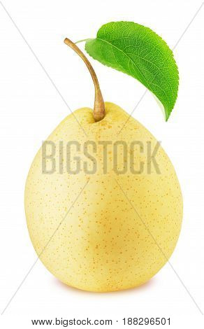 Ripe chinese pear with green leaf isolated on a white