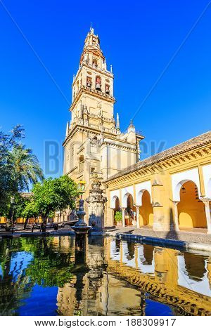 Cordoba Spain. Bell tower at the Mezquita Mosque-Cathedral from Court of Oranges.
