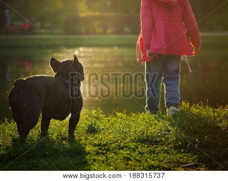 Child and dog by the water at sunset