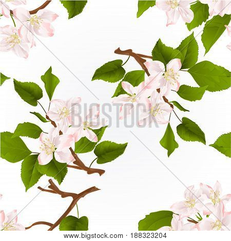 Seamless texture Apple tree branch with flowers nature background vintage hand draw vector illustration