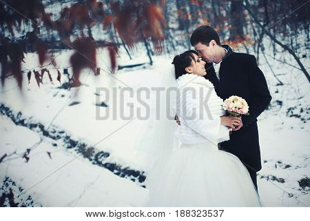 A Look From Red Leaves On A Wedding Couple Standing In The Snow