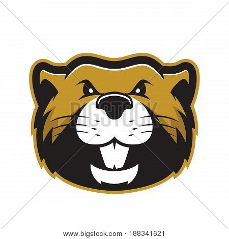 Clipart picture of a beaver head cartoon mascot logo character