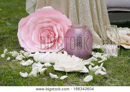 Big adorable peony bud with smaller white buds and and petals and lanterns, standing on grass
