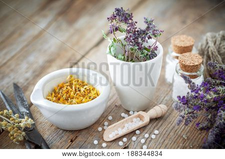 Mortar and bowl of dried healing herbs bottles of homeopathic globules scissors and scoop. Homeopathy medicine concept.