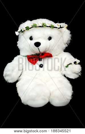 Teddy Toy Bear On Black Background. Cute Animal. Child Present