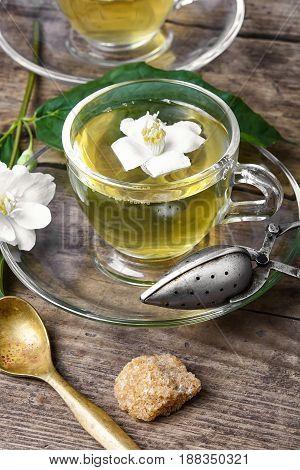 Healthy Green Tea With Jasmine