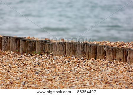 Small wooden posts lined in a row on a pebbled beach with the sea in the background and space for text.