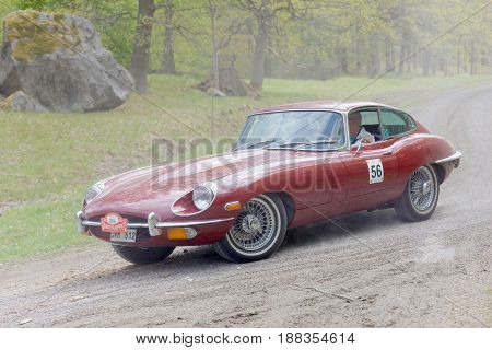 STOCKHOLM SWEDEN - MAY 22 2017: Purple Jaguar E-type Ser2 classic car from 1970 driving on a country road in the public race Gardesloppet in the forests at Djurgarden Stockholm Sweden. May 22 2017