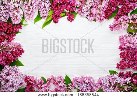 Spring flowers. Lilac flowers on white wooden background. Top view flat lay copy spase