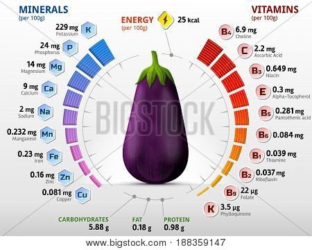 Vitamins and minerals of eggplant fruit. Infographics about nutrients in raw aubergine. Best vector illustration for agriculture veggies vitamins health food nutrients diet etc