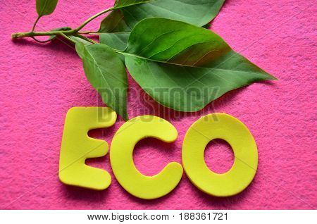 word eco on a abstract colorful background