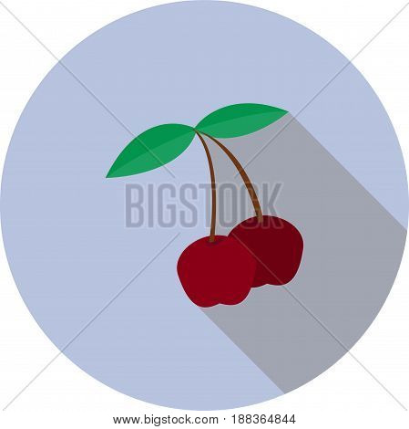 Vector image of a sweet cherry on a round background