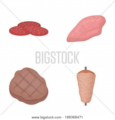 Pieces of salami, turkey fillet, grilled steak, kebab.Meat set collection icons in cartoon style vector symbol stock illustration .