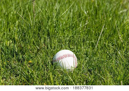 Baseball in green grass pastime, play, professional