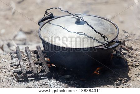 kettle on a fire in nature . A photo
