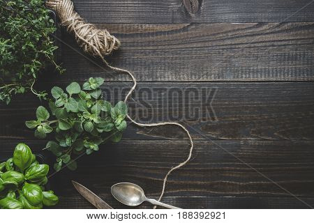 Fresh herbs on the dark wooden table, top view. Rustic background with copy space.