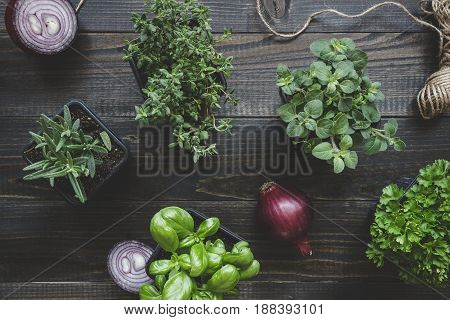 Fresh herbs with red onion on the wooden background, top view.