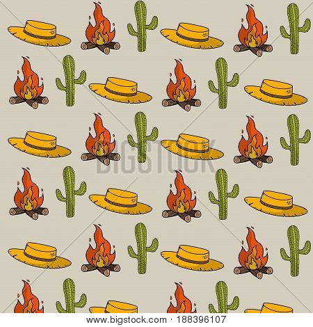 hat, cactus and wood fire things background, vector illustration