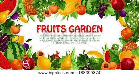 Fruit and berry poster. Apple and pear, banana and pineapple, peach, grape, plum, watermelon and lemon, kiwi, melon and garnet, leaf and grapevine