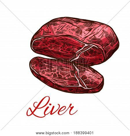 Meat liver, fresh offals isolated sketch. Liver organ of beef, pork or lamb mammal animal for butcher shop, meat store label, food themes design