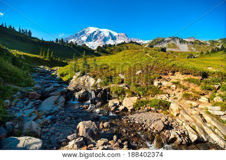 The peak of Mount Rainier rises above Myrtle Falls Creek and Paradise meadows on its lower slopes