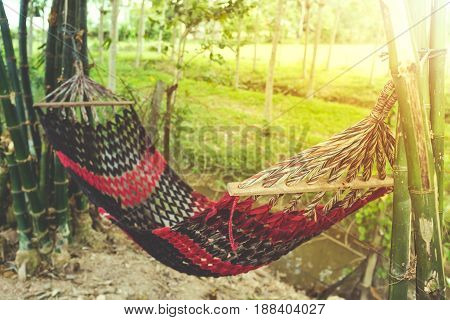 Empty hammock between bamboo trees in the garden on nature background. Outdoor at the daytime on summer day with bright sunlight. Vintage effect tone.