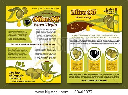 Olive oil product posters or brochures. Vector design of green and black olives and extra virgin olive oil in bottles and jars from organic farming for natural cuisine and healthy cooking