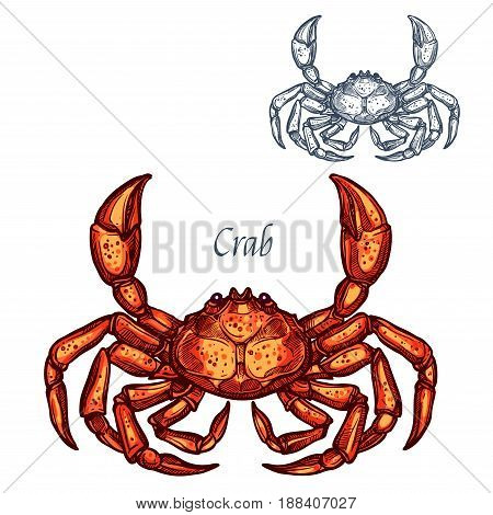 Crab or lobster sketch vector icon. Saltwater crustaceans species with claws. Isolated symbol for seafood restaurant sign or emblem, fishing club or fishery market